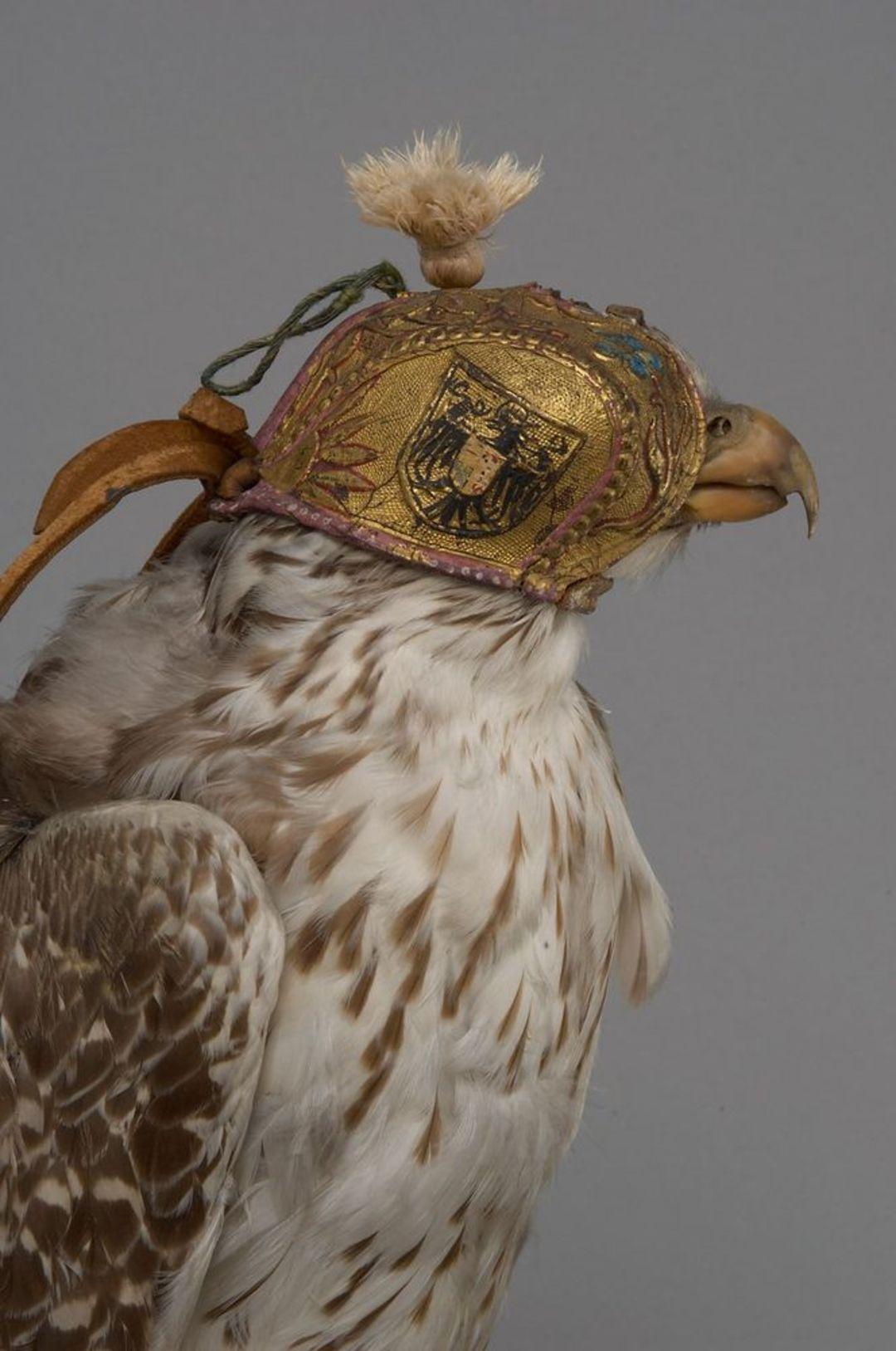 Falkenhaube - © Kunsthistorisches Museum Wien, Hofjagd- und Rüstkammer