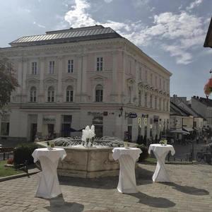 Gebrüder Moped: Heute gehört uns Österreich und morgen die ganze Scheibe